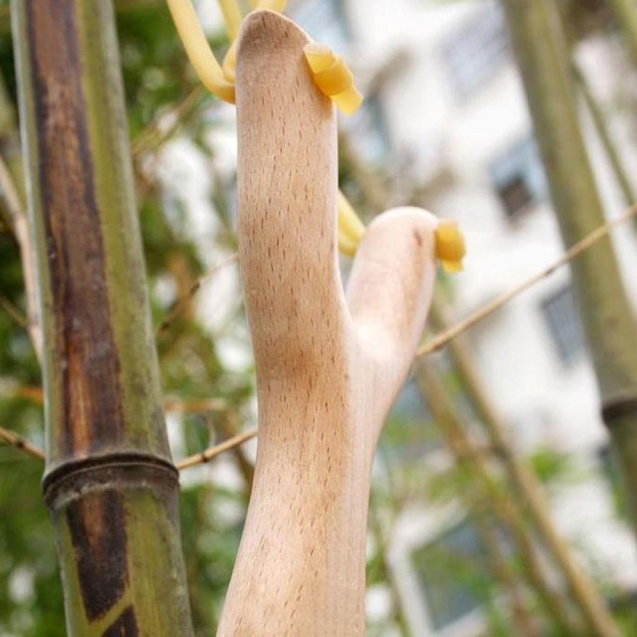 Ξύλινη Σφεντόνα Ψαρέματος Με Διπλό Λάστιχο - 4160